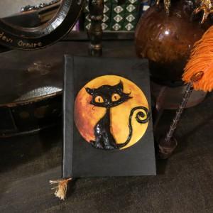 Gatto con la luna